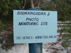 Boorangoora 3 is located adjacent to the steps on the eastern end of the main beach