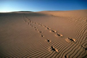 Sand Blow with Footprints, Knifeblade