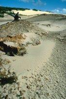 Sand Blow near Hidden Valley