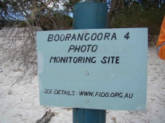Boorangoora 4 is set high on the lunette of Lake McKenzie's much less used more pristine second beach