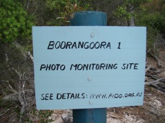 On 28 November 2012 FIDO installed four photo monitoring sites to visually compare beach changes over time