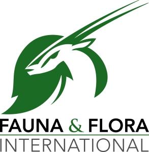 ffi_new_logo_text_below_colour