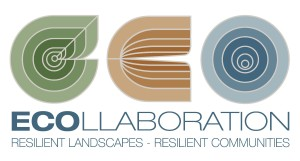 ECO-LOGO-Stack-COLOUR-v1-Small