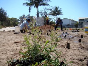 Volunteers and Council workers collaboratively create Eurong demonstration garden in the roundabout, transforming the visual approach to Eurong