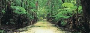 Photo: Tourism Queensland